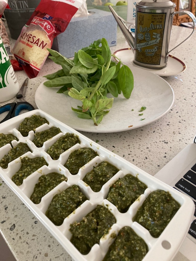 Home made pesto in iceblock trays, ready for the freezer.